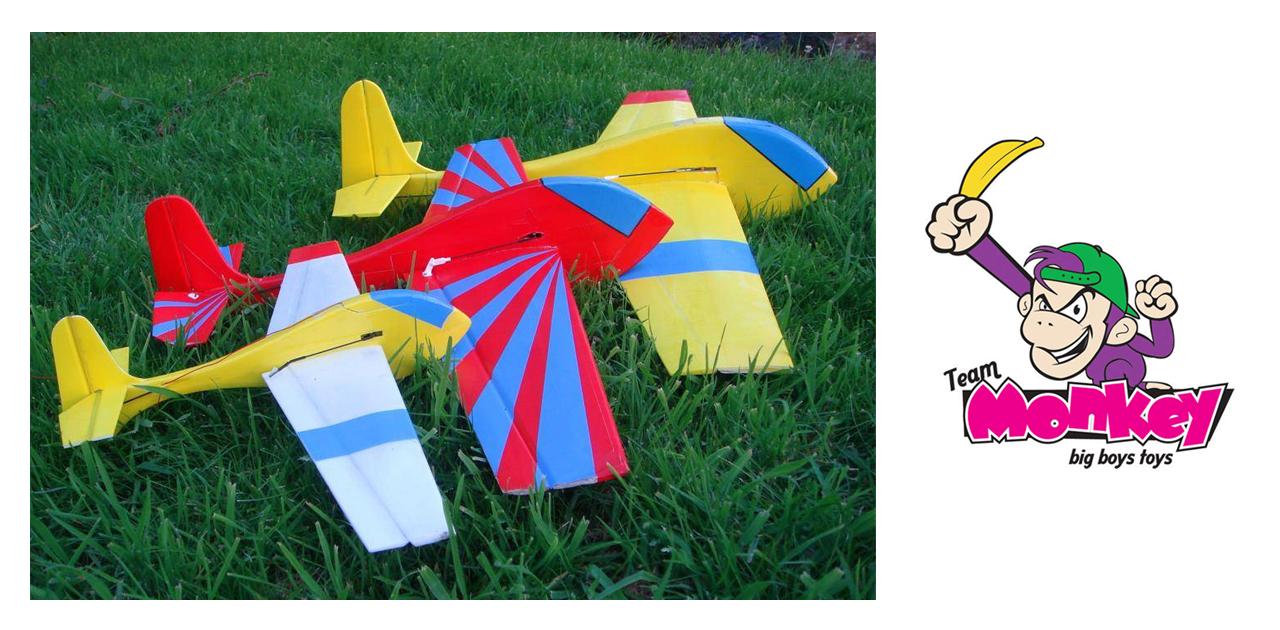 Swinger VTPR Glider – SlopeAerobatics com